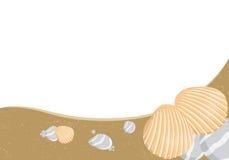 Vector Seashells Stock Images