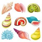 Vector seashells set. Stock Photography