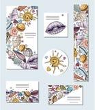 Vector seashells set stock illustration