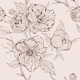 Vector sepia seamless background with peony Stock Photography