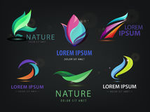 Vector set of abstract wavy, spa, salon, nature logos, icons  on dark background Royalty Free Stock Photo