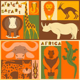 Vector set of African animals Stock Images