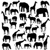 Vector set of animal silhouettes. Hand drawn elephants,giraffes,antilopes and deers isolated at white background Stock Photo