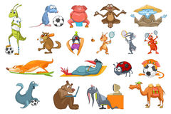 Vector set of animals sport illustrations. Royalty Free Stock Photography