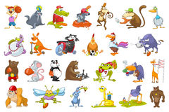 Vector set of animals sport illustrations. Stock Photo