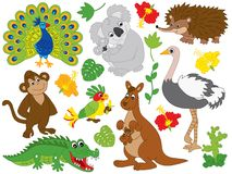Vector Set of Australian Animals Royalty Free Stock Photography