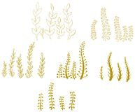 Vector set of autumn grass and flowers royalty free illustration