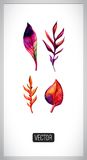 Vector set of autumn leaves painting traces. Set Stock Photo