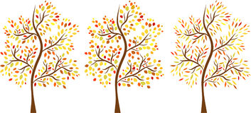 Vector set of autumn trees Stock Images