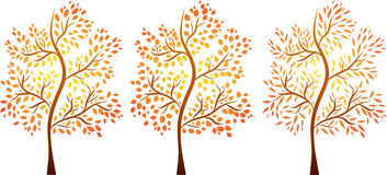 Vector set of autumn trees Royalty Free Stock Images