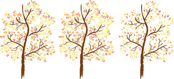 Vector set of autumn trees Royalty Free Stock Photography