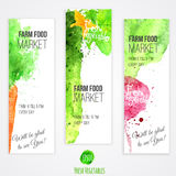 Vector set of banners with watercolor colorful Royalty Free Stock Photo
