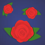 Vector set of beautiful red roses on gradient blue background.  Royalty Free Stock Photography