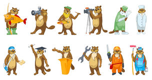 Vector set of beavers profession illustrations. Stock Photo