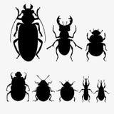 Vector set of beetles royalty free illustration
