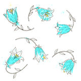 Vector set of bell flowers Royalty Free Stock Photo