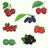 Vector set of berries. Vector illustration Royalty Free Stock Images