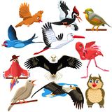 Vector set of birds like eagle, woodpecker, stork, flamingo, parrot and owl. Isolated on a white background Stock Images