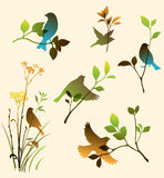 Vector set of birds and twigs Stock Photography