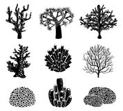 Vector set of black coral silhouettes Royalty Free Stock Images