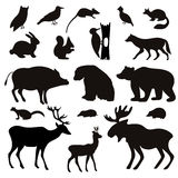 Vector Set of Black Tropical Animals and Birds Silhouettes. Royalty Free Stock Images