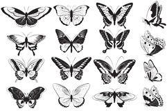 Vector set of Black and white butterflies Stock Photography