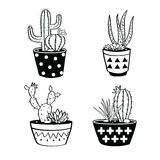 Vector set with black and white cactuses and succulents in pots. stock illustration