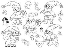 Vector Set of Cute Cartoon Gnomes. Vector set of black and white cute cartoon gnomes working. Vector garden gnome. Vector forest gnome. Vector gnome. Gnomes Royalty Free Stock Images