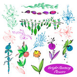 Vector Set Blumen Stockfoto