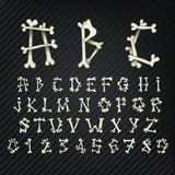 Vector set of bone alphabet and numbers. Font symbols on black background. Stock Image