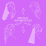 Vector set of bridal hairstyles isolated on a lilac background Stock Photo