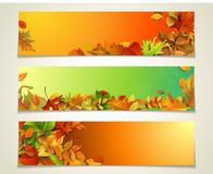 Vector set of bright horizontal fall banners. Royalty Free Stock Photography