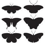 Vector set with  butterflies Royalty Free Stock Photography