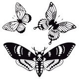 Vector set of butterfly silhouettes Royalty Free Stock Photography