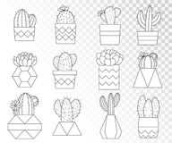 Vector set of cacti and succulents in flower pots. Line art collection. Monochrome stock illustration