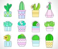 Vector set of cacti and succulents in flower pots. Flat style. Colored collection vector illustration