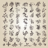 Vector set: caligraphic flower design Royalty Free Stock Image
