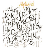 Vector set of calligraphic acrylic or ink alphabet Stock Photos
