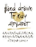Vector set of calligraphic acrylic or ink alphabet. White background. Stock Photos