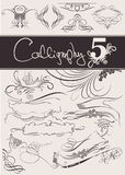 Vector set: calligraphic design elements Royalty Free Stock Images