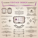 Vector set calligraphic design elements decoration Stock Photography