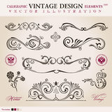 Vector set. Calligraphic design elements ornament Royalty Free Stock Images