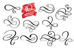 Vector set of calligraphic design flourish elements and page decorations. Elegant collection of hand drawn swirls and. Curls for your design royalty free illustration