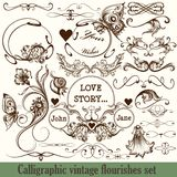 Vector set of calligraphic elements for design. Calligraphic vec Royalty Free Stock Photo