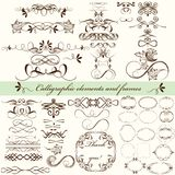 Vector set of calligraphic elements for design. Calligraphic vec Stock Photos
