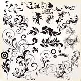 Vector set of calligraphic elements for design. Calligraphic vec. A collection of calligraphic vector vintage design elements Stock Photo