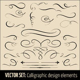 Vector set of calligraphic and page decoration. Design elements. Elegant elements for your design Royalty Free Stock Images