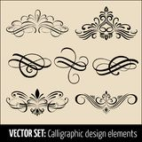 Vector set of calligraphic and page decoration design elements. Elegant elements for your design. Modern handwritten. Calligraphy elements. Vector Ink Stock Photos