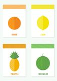 Vector set of cards with fruits and berries. Vector illustration. Set of cards with fruits and berries in flat style on a white background royalty free illustration