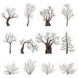 Vector Set of Cartoon Bare Trees and Shrubs Stock Photos